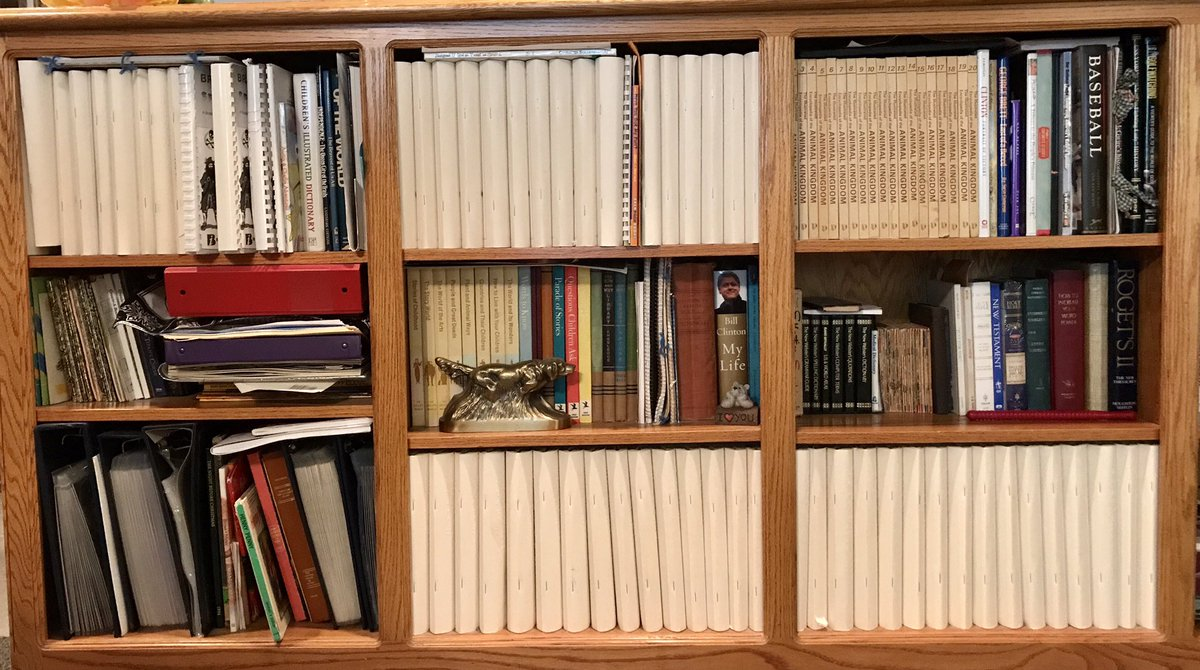 Three shelves of books, with most of the spines large, unlabelled Braille editions.