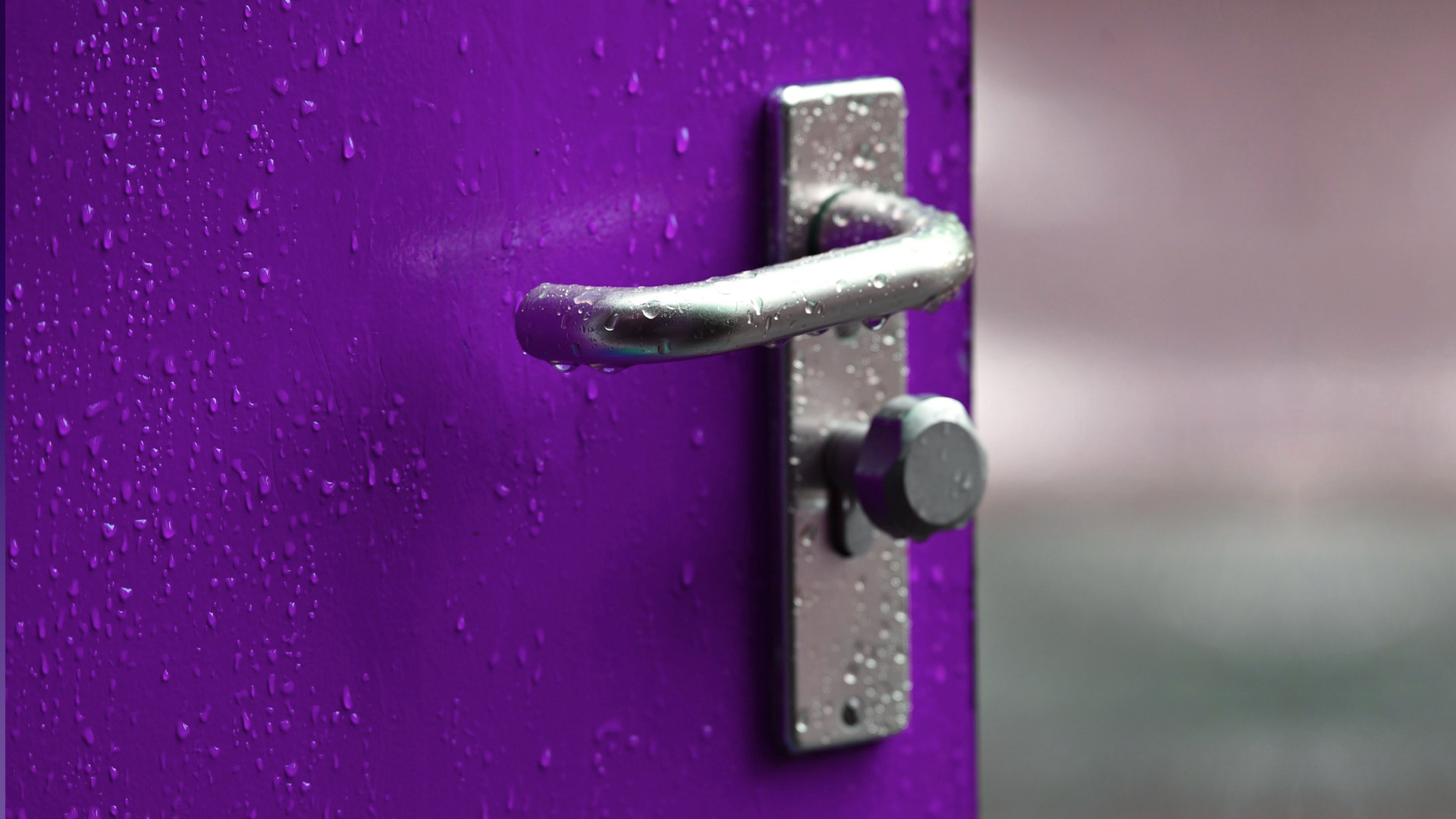 A purple door with a silver handle.