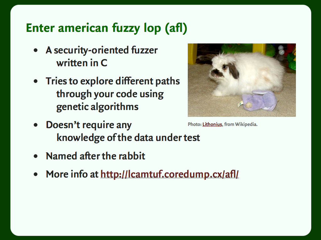 "Slide with a bulleted list and a picture of a rabit: ""Enter american fuzzy lop (afl)""."