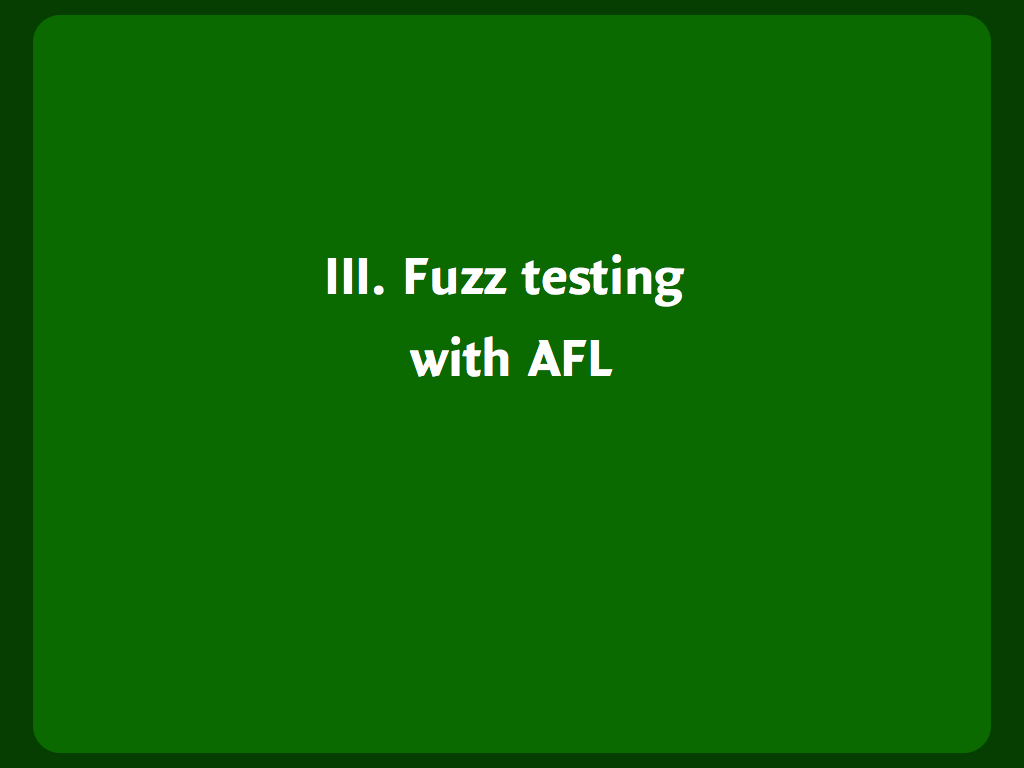 "Header slide: ""Fuzz testing with AFL""."