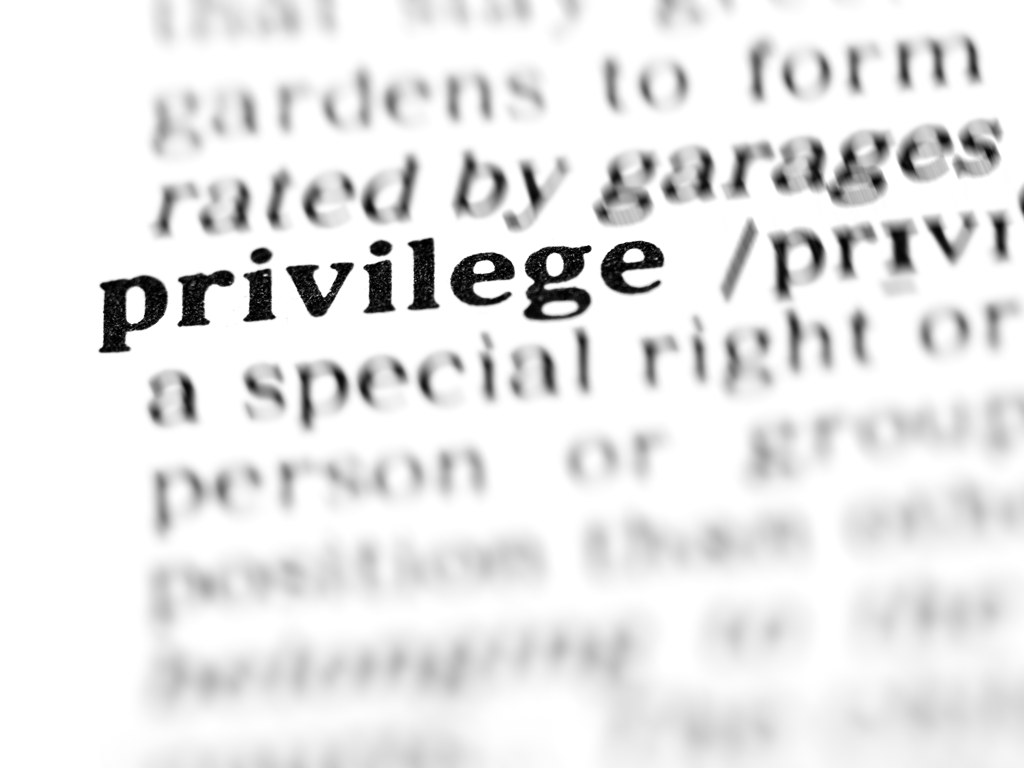 "The word ""privilege"" highlighted in the dictionary."